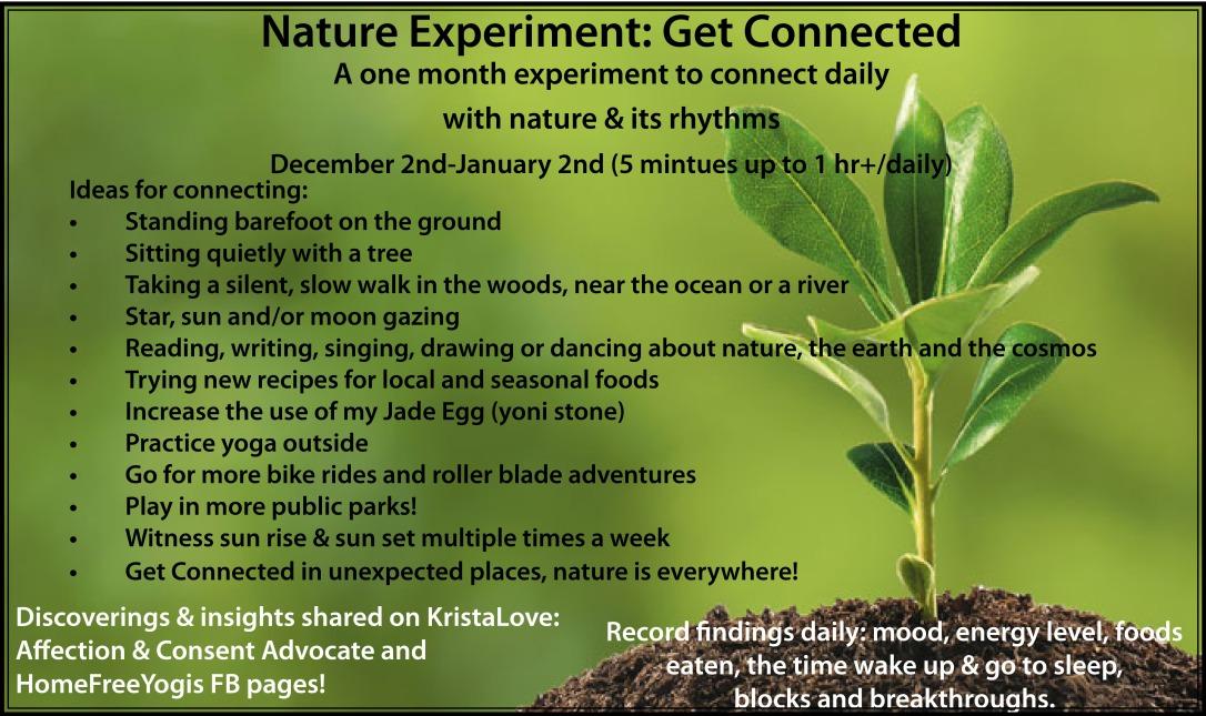 Nature Experiment1.jpg